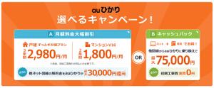 プロバイダー「So-net (ソネット)」のインターネット接続サービス『auひかり』